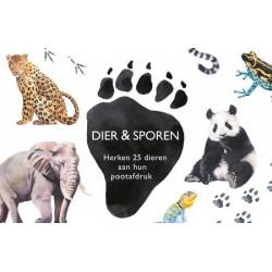 Dier & Sporen
